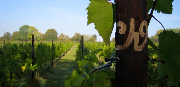vin-marden