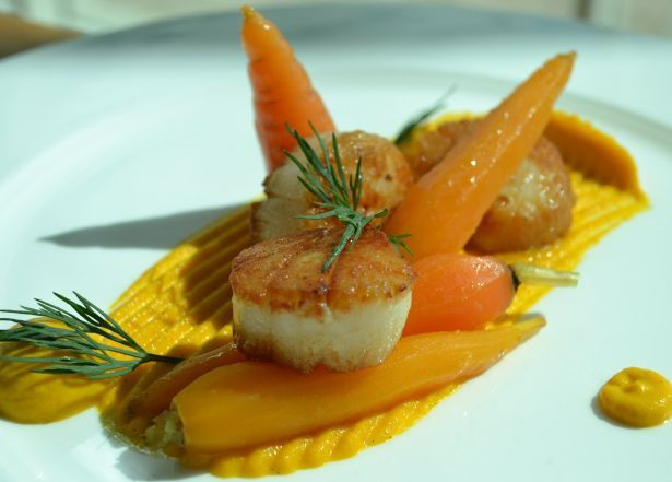 scallops with anise carrot puree