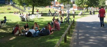 University_of_Sussex_in_Summer (1)