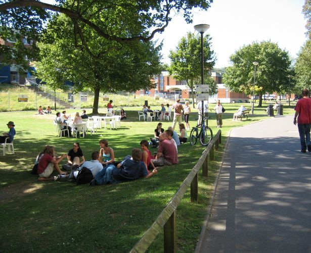University_of_Sussex_in_Summer