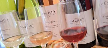 Bolney.Estate.wines (1)